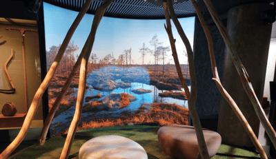 Karhu suolla -animaatio Keskisuomalaisuutta etsimässä -näyttelyssä Kuva Johanna Puhakka KeMu