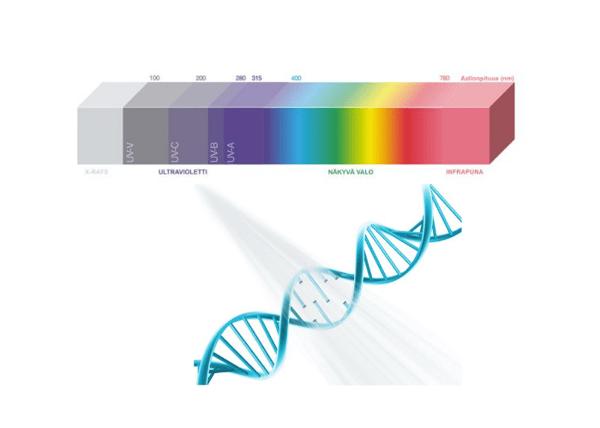 Led Future UVC-valon vaikutus DNA:han