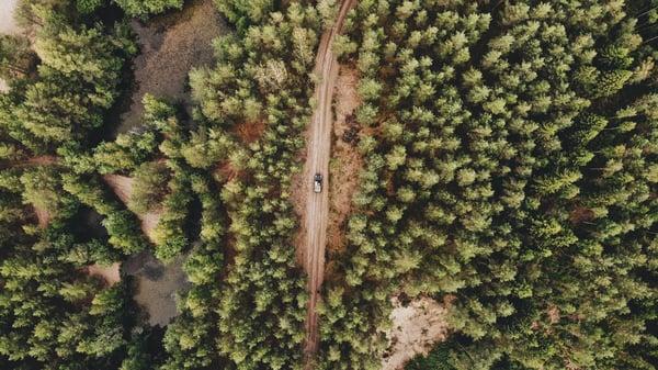 metsätie ylhäältä päin kuvattuna Credit: delavaucharlie Unsplash